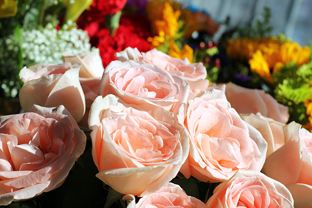 sweet Friday, beautiful flowers, bouquets