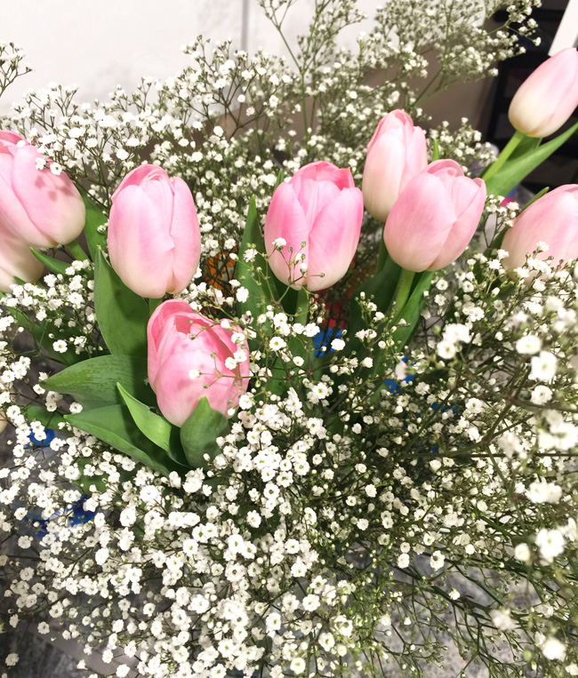 gorgeous flowers, pretty tulips, spring flowers