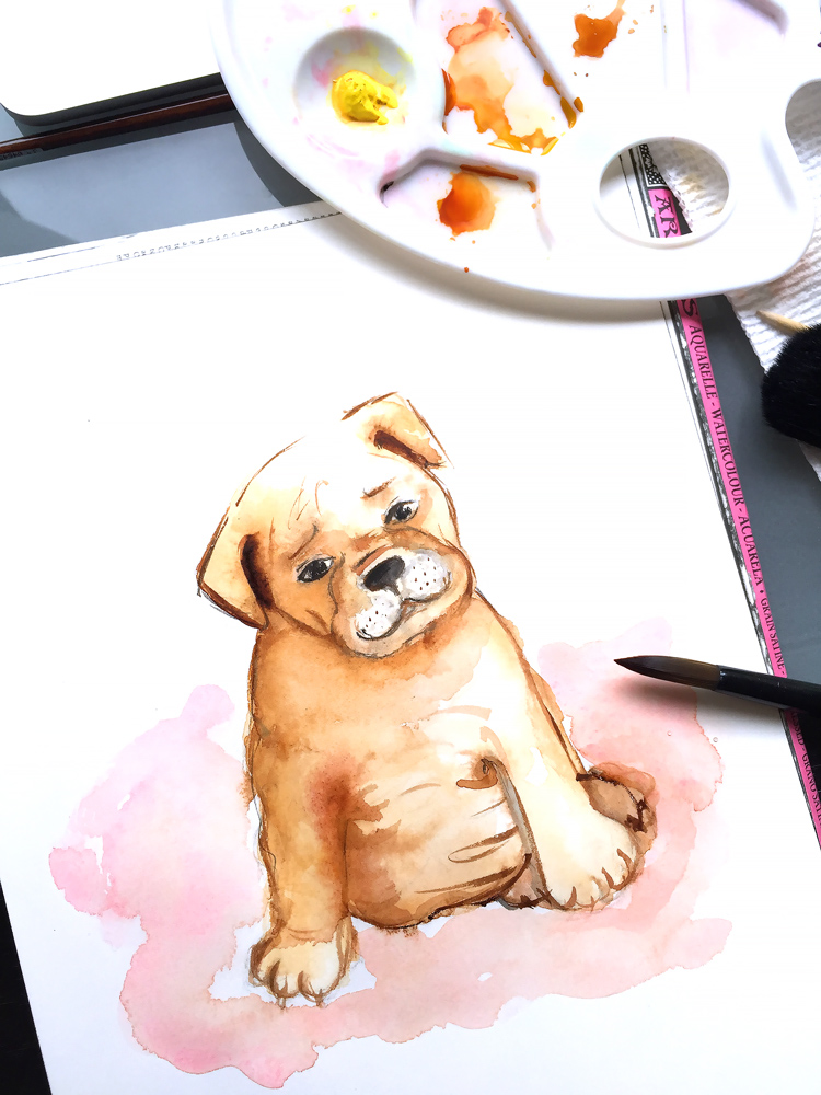 pet watercolor painting process