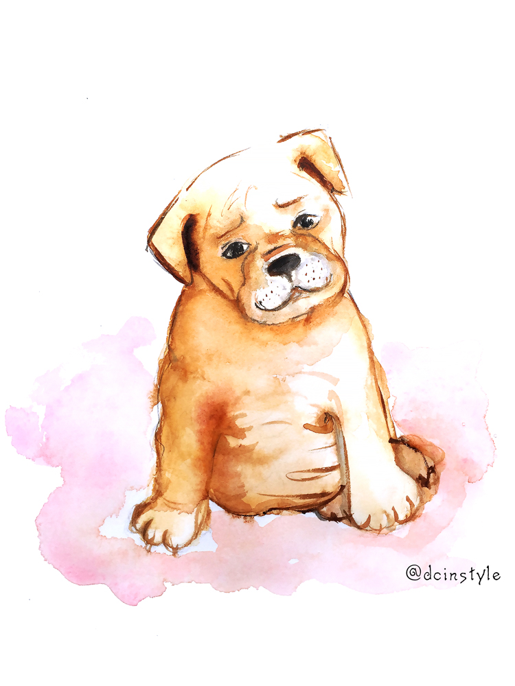cute puppy watercolor painting